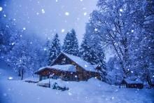 248008_zima_snieg_dom_drzewa
